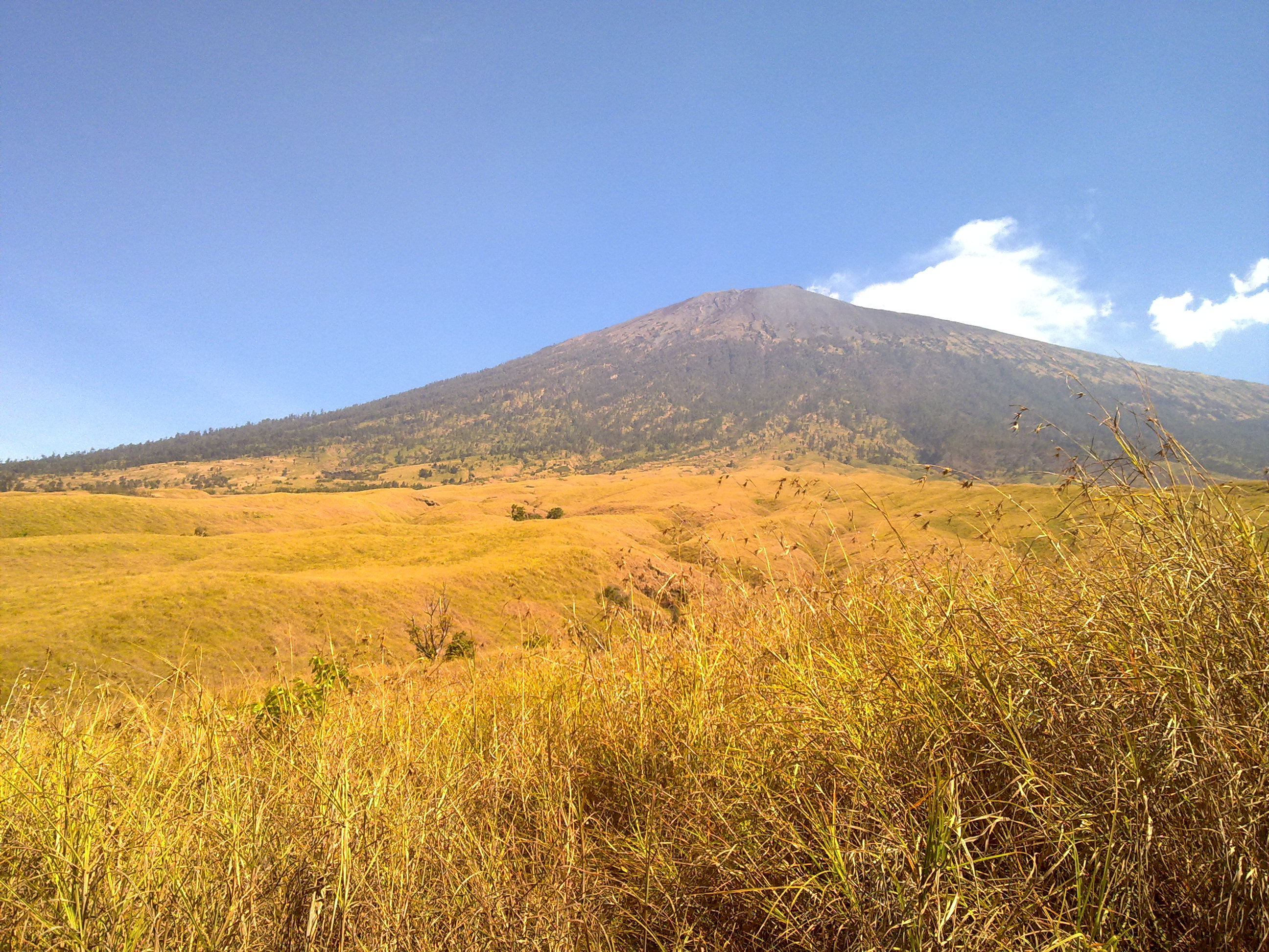 Rinjani The Pain And The Smile Wine Fallenskys